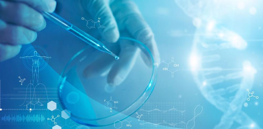 development of pharmaceuticals